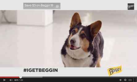 "Screenshot from the I Get Beggin music video featuring a corgi salivating as he stares up at the Beggin popper packaging (located out of frame). It includes a text box in the top left that reads ""Save $3 on Beggin'"""
