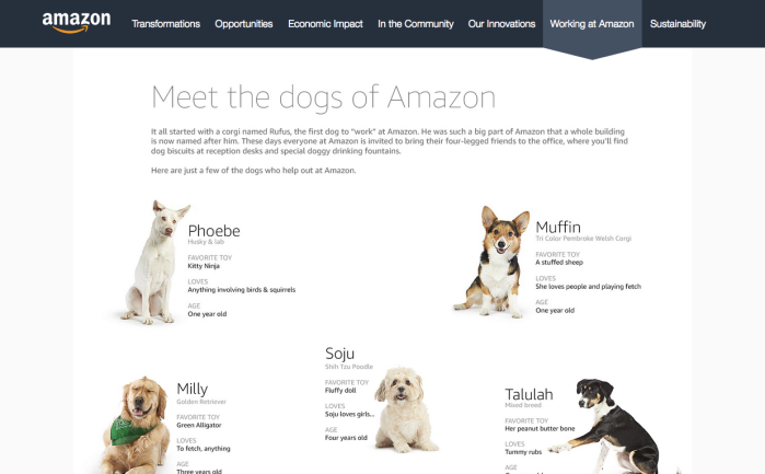 foxie-digital-dogs-of-amazon-recruitment-page.png